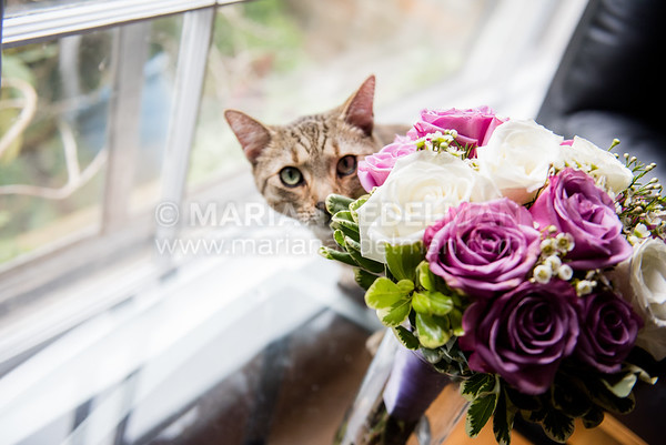 Mariana_Edelman_Photography_Cleveland_Wedding_Smilovich_0007