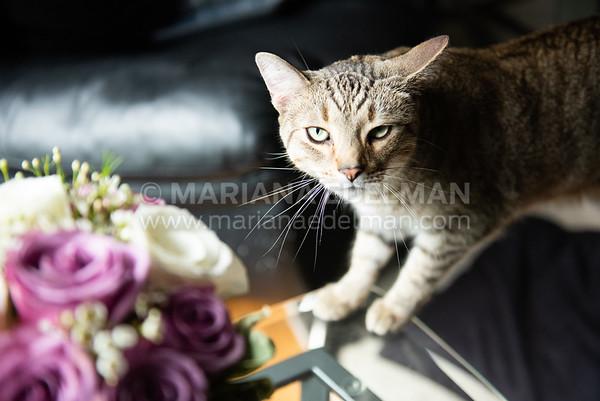 Mariana_Edelman_Photography_Cleveland_Wedding_Smilovich_0006