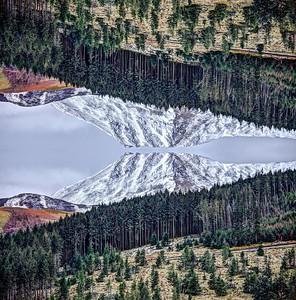 Mon 11th Mar : Bob's Seat : Causey Pike : mirror image