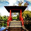 Hawaii-Hilo-Japanese-Gardens-001