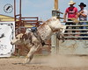 LI4_3367_MoosominBull_Futurity2017
