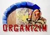 organzim