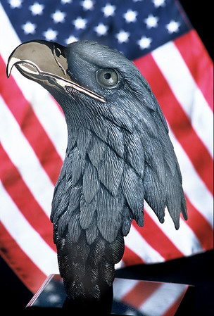 Painted Bronze Eagle's Bust by Matthew Meador