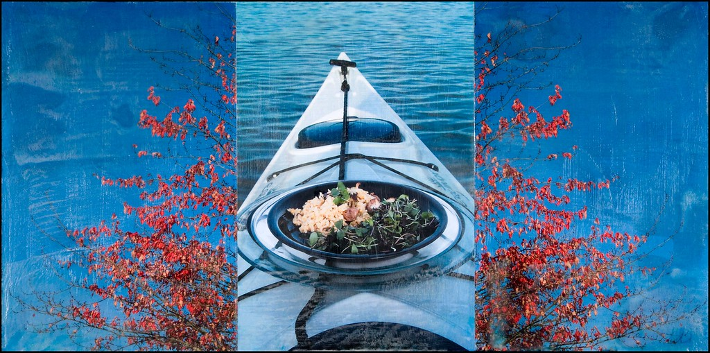 Mushroom Risotto and Micro Green Salad on Kayak