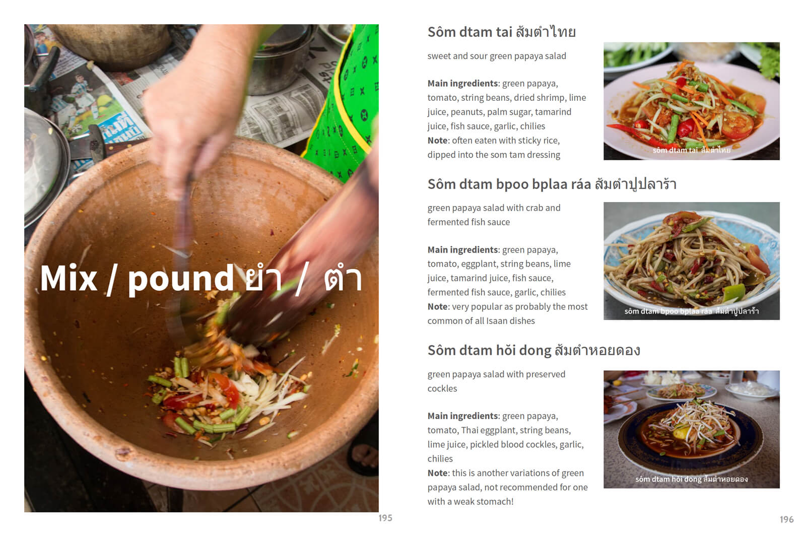 Eating thai food guide thai street food restaurants and recipes the layout of the guide is specifically designed to be easy to read and illustrated with pictures that easily explain how and what thai food to order forumfinder Image collections