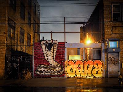 Cobra!