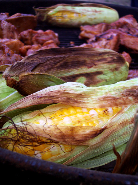 Corn on the grill