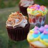 Mini Cupcakes in Spring