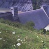 Dam and flowers