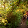Dryer Road Park - Trail Z