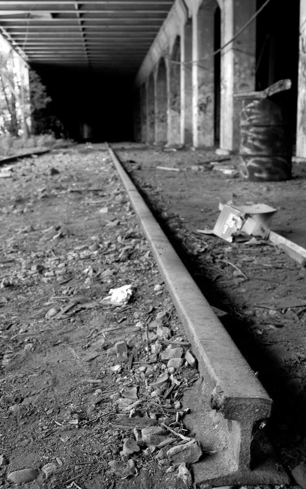 Lone Rail