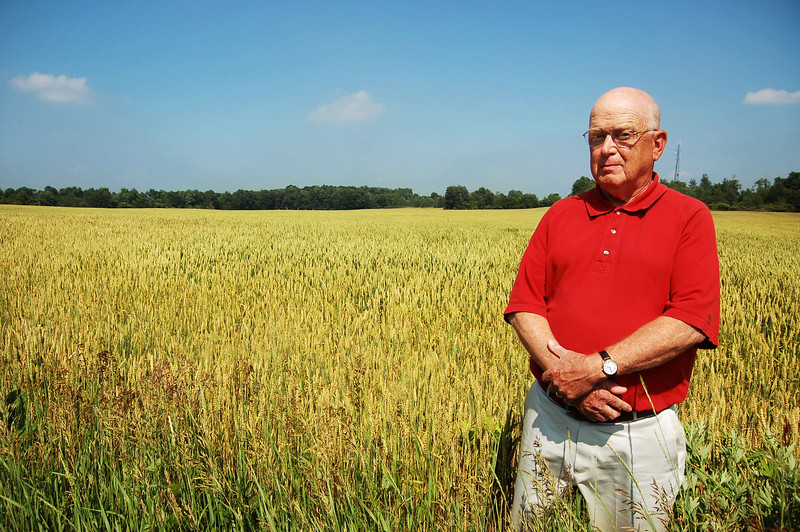For the Future of a Wheat Field