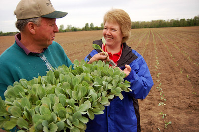David & Julie with Cabbage