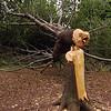 The Tree Bandits Strike Again!