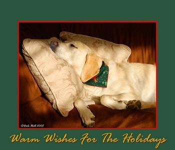 Christmas e-card for web
