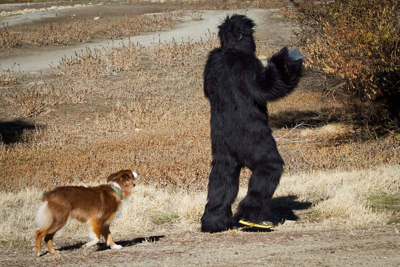 And she chased him down the road