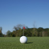 """Chardon Cheerleading Golf Outing"""