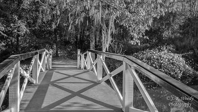 Charleston_032019-10
