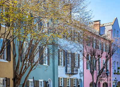 Charleston_032019-4