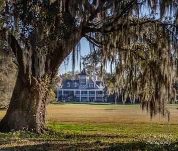 Charleston_032019-7