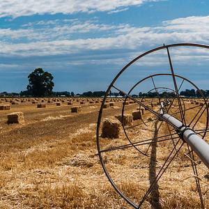 Hay & Irrigation, Burley, ID