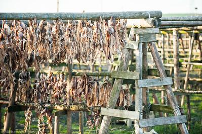 Fish drying racks, Iceland