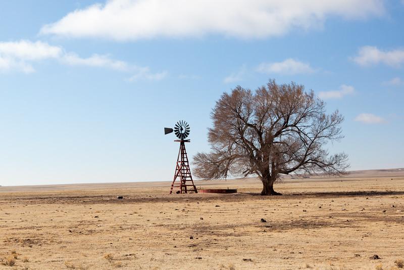 New Mexico Scene