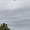 """The banner lifts off. <br><span class=""""skyfilename"""" style=""""font-size:14px"""">2018-10-06_skydive_cpi_0072</span>"""