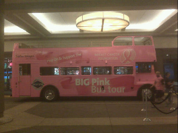 BIG Pink Bus Tour in NYC - by Brian Radoian
