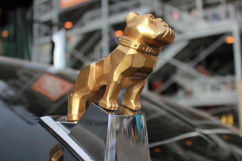 Mack Bulldog gold
