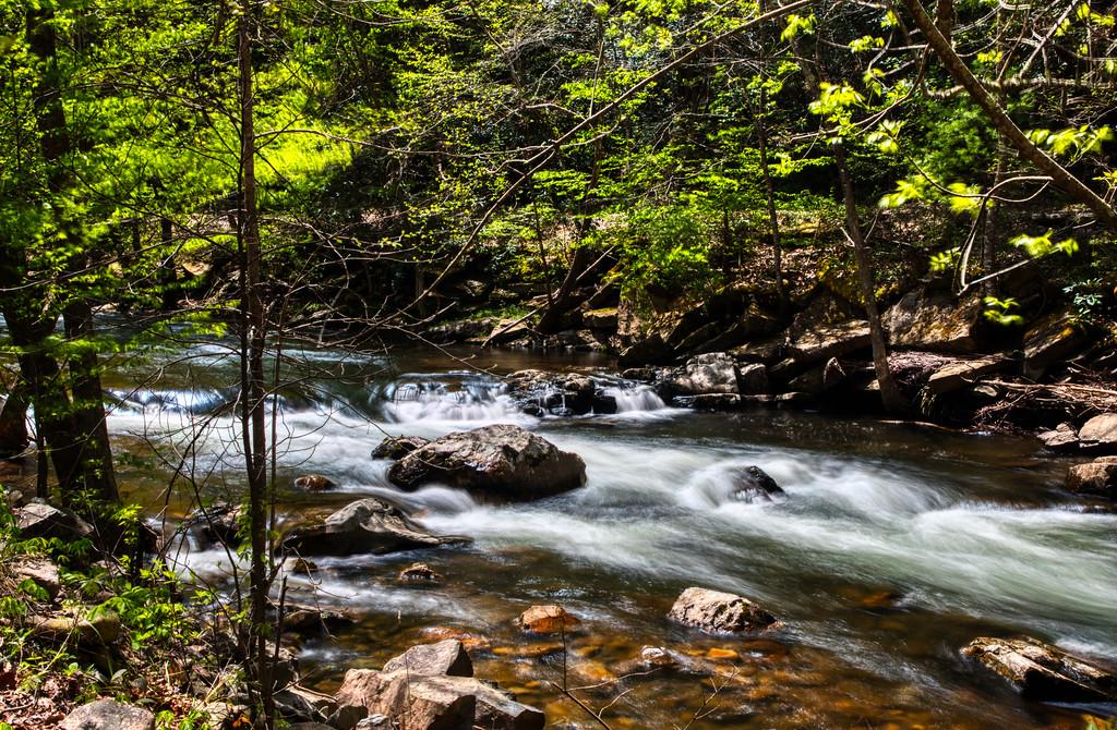 IMAGE: https://photos.smugmug.com/Nature-and-Landscape/i-5wMNZ7n/1/a3530e8c/XL/_MG_2622-a-XL.jpg