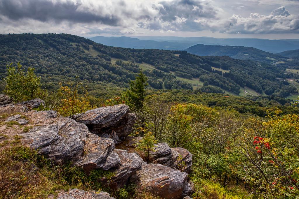 IMAGE: https://photos.smugmug.com/Nature-and-Landscape/i-6HzKhgz/0/056a5317/XL/_MG_4283a-XL.jpg