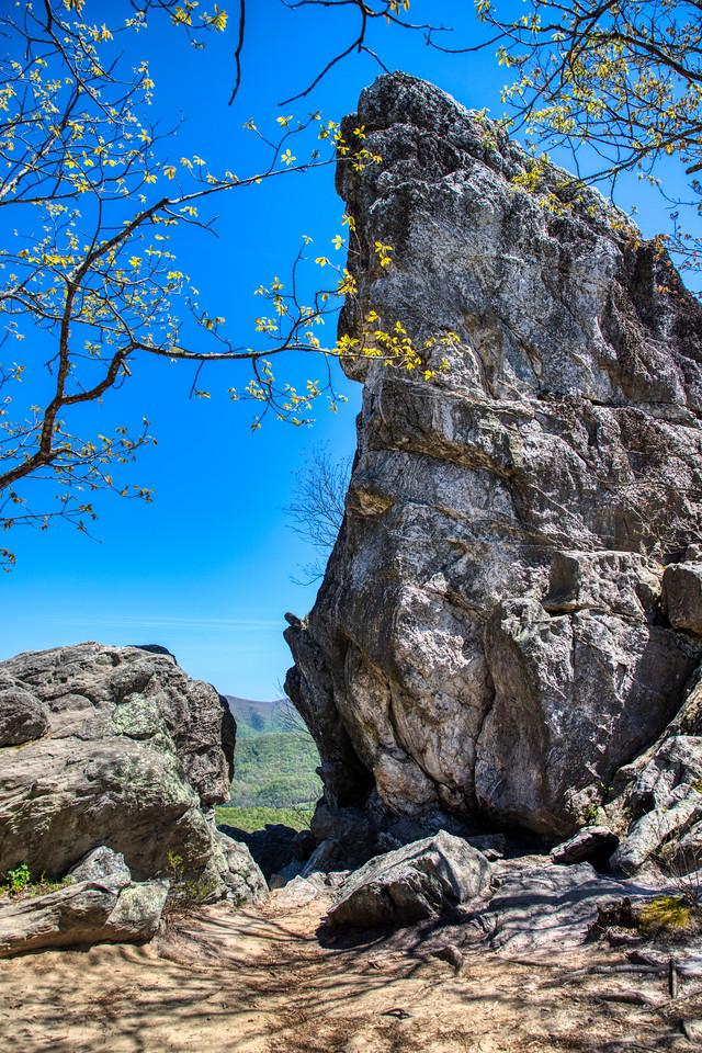 IMAGE: https://photos.smugmug.com/Nature-and-Landscape/i-QZxZqDL/1/09299a52/X2/_MG_2567-a-X2.jpg