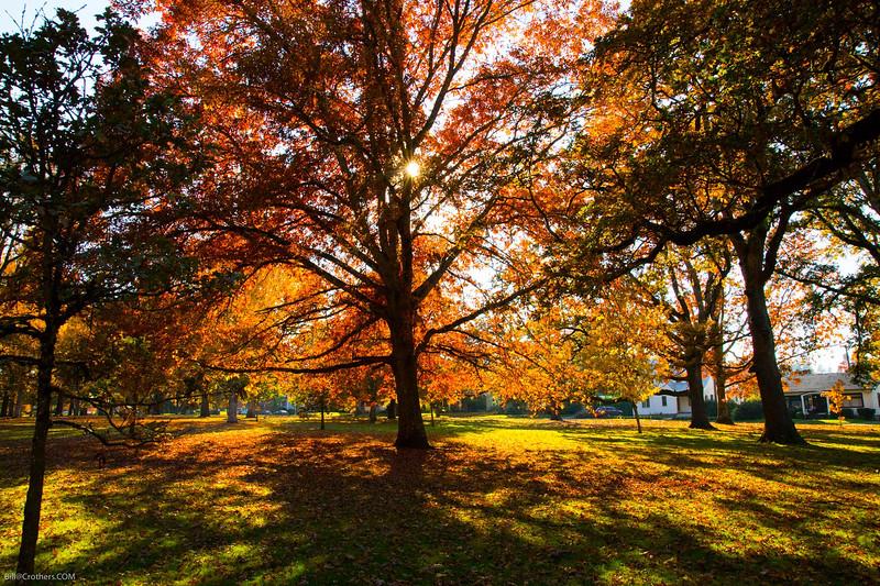 Bush Park, Salem Or