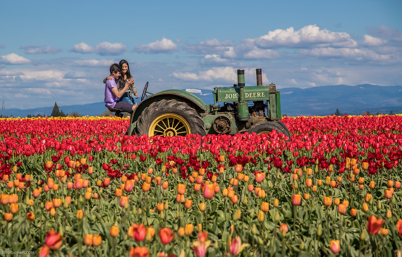 tyring to take selfies in the tulip field