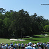 augusta2012_14_11th_and_12th_greens