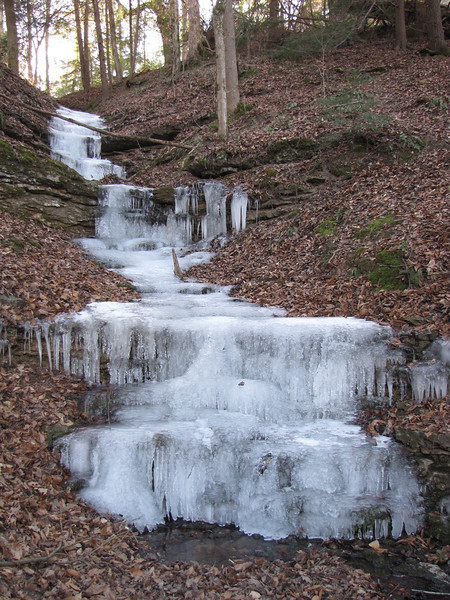 Burgess Falls SP - a small side falls completely frozen over.