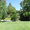 Back Yard Panorama