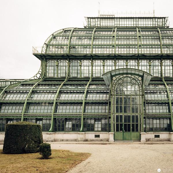 Palmenhaus Schönbrunn im Winter