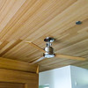 Our ceiling and fan