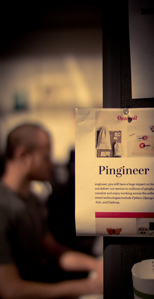 What is a Pingineer?
