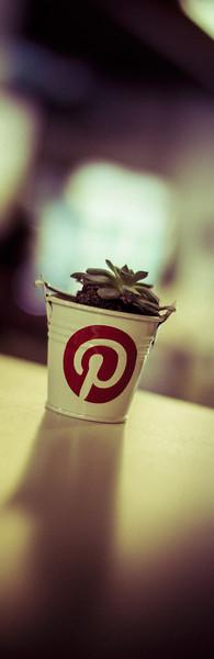 A tiny Pinterest flower pot...