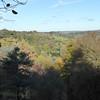 View over valley at Winkworth Arboretum (Nat. Trust)