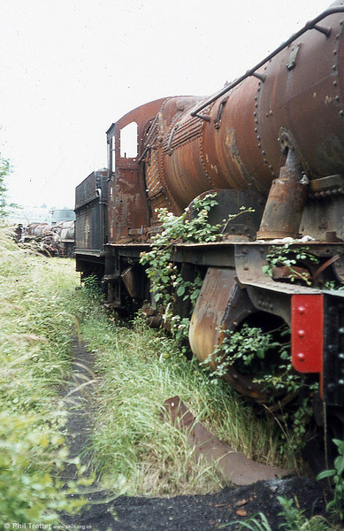 A GWR 2-8-0 succumbs to the weeds.