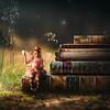 Little book fairy