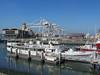 Potomac in port