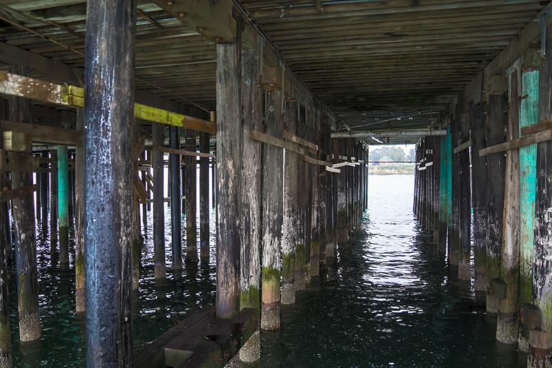 Under the Santa Cruz Warf.