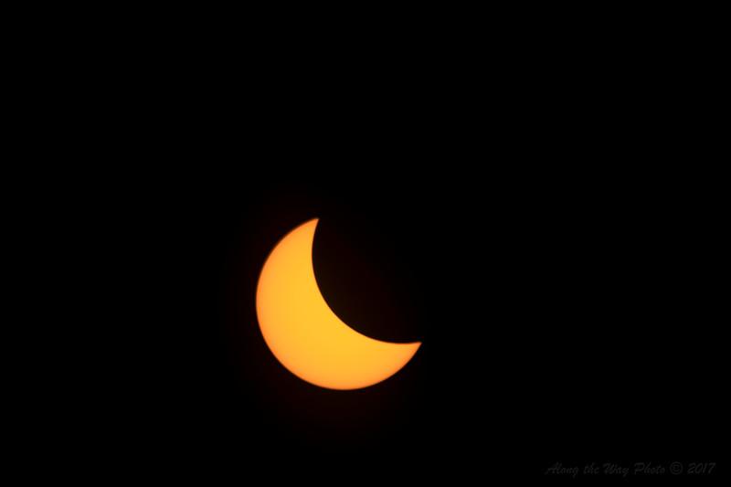 Solar-5598