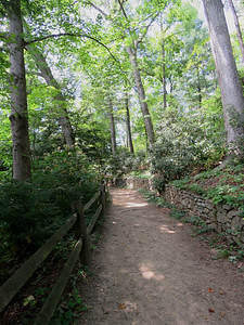 a trail at The Botanical Gardens at Asheville
