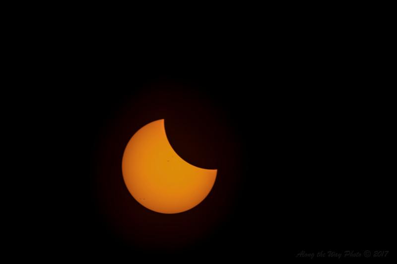 Solar-5597